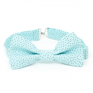 Aqua & Brown Dots Bow Tie
